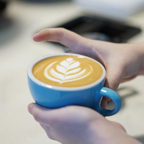 6 (Flat White/Cappuccino)